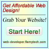 FlamyTech Web Design